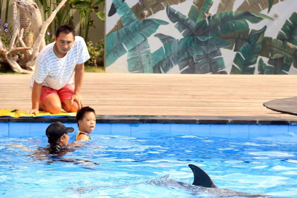 bali dolphin therapy charity program
