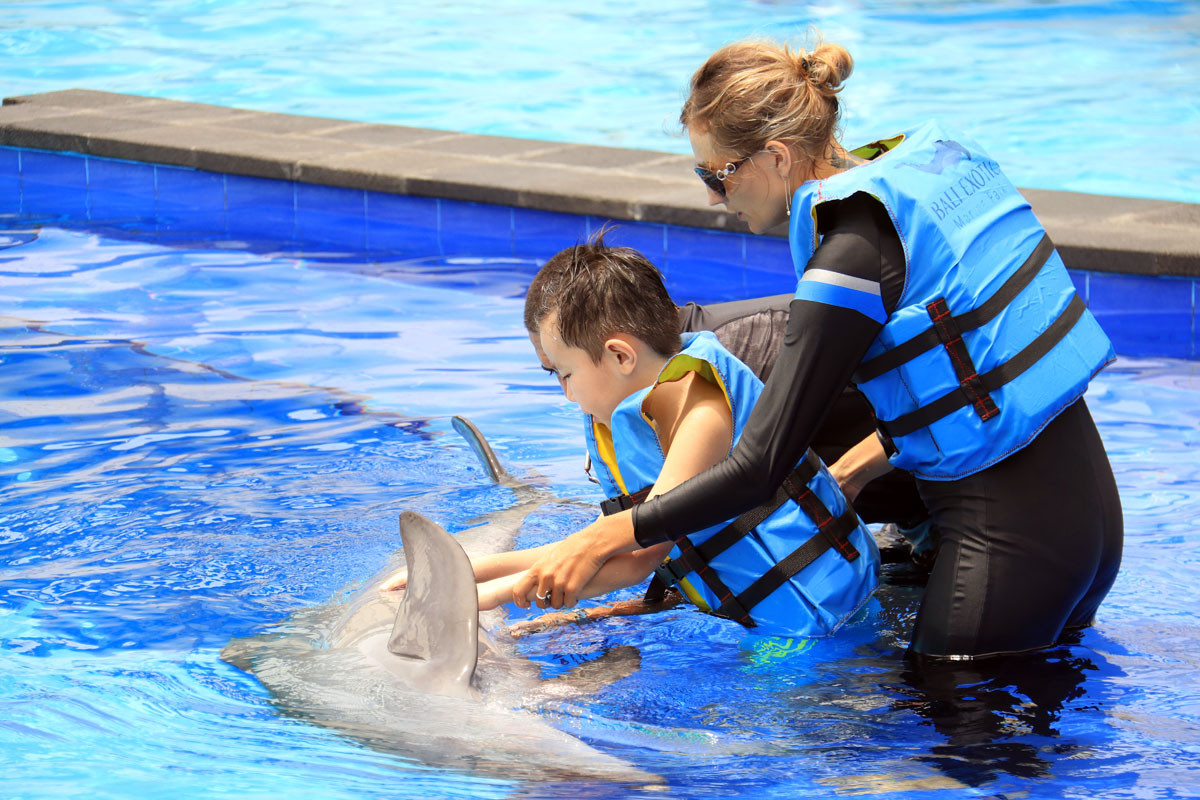 dolphin-therapy-session-7