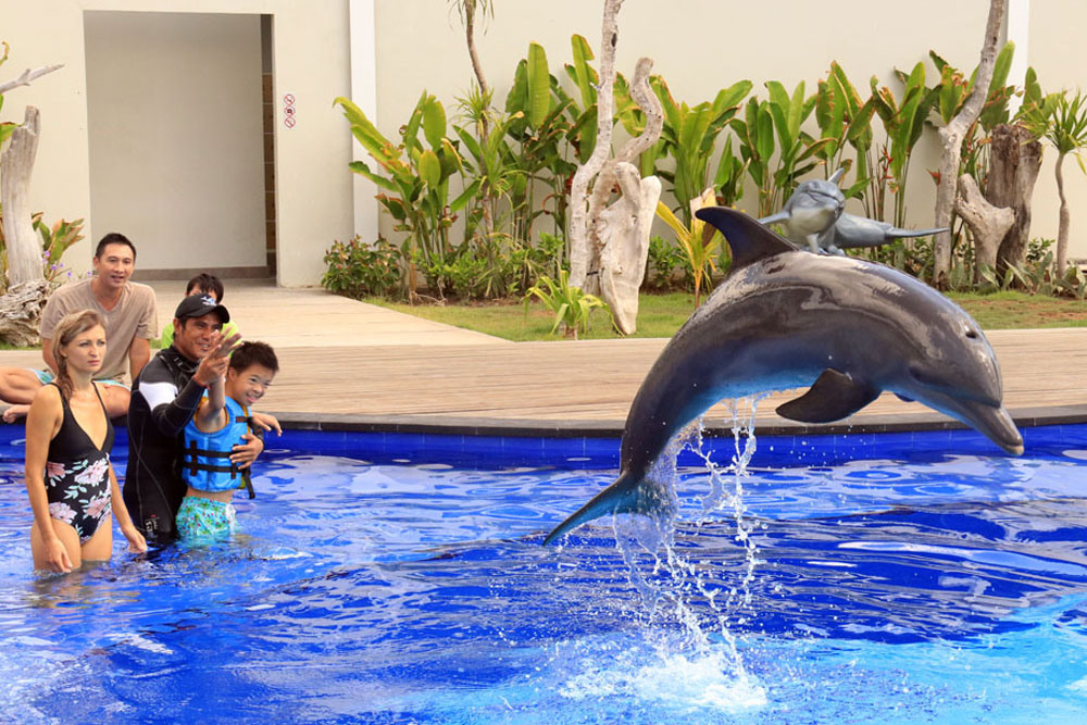 bali-dolphin-therapy-patient-4