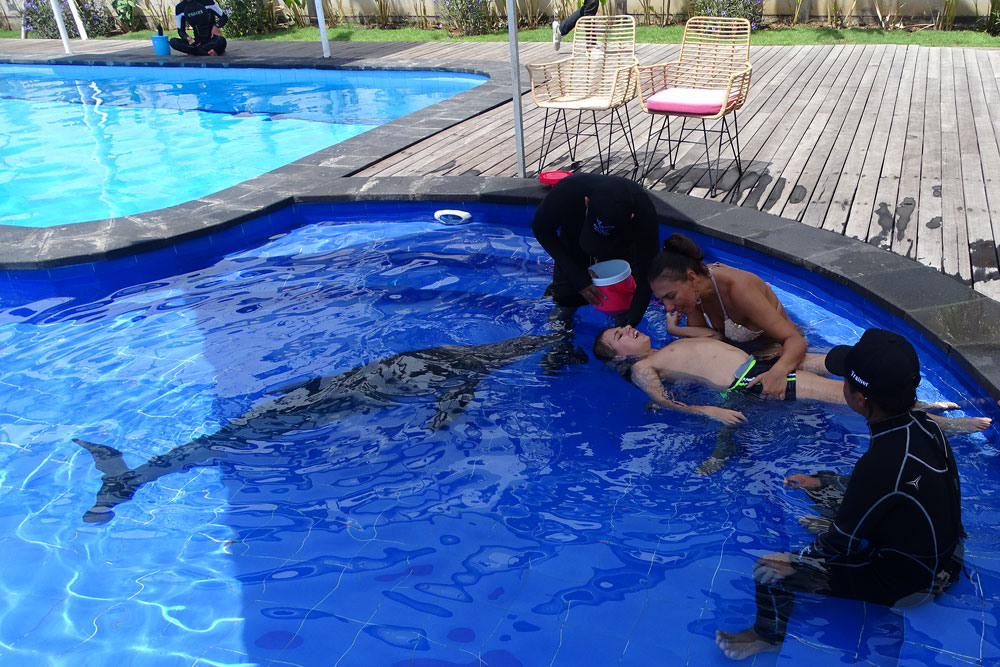 bali-dolphin-therapy-patient-6