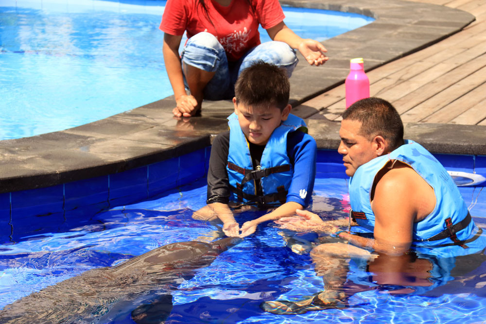 bali-dolphin-therapy-patient-autism-1