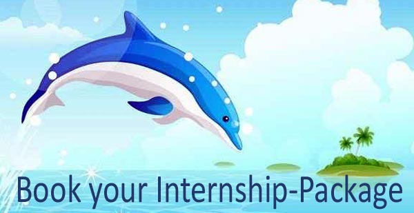 bali therapeutic internship abroad