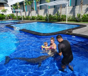 Dolphin therapy during COVID-19 crisis