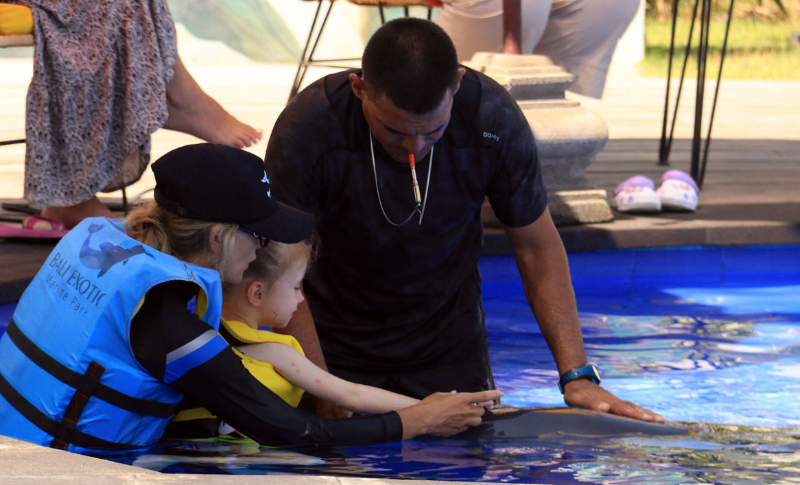 Education in Dolphin Assisted Therapy